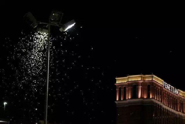 大量蝗虫侵袭拉斯维加斯 居民并不恐慌