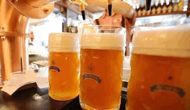 您与德国贵族只差一杯啤酒的距离