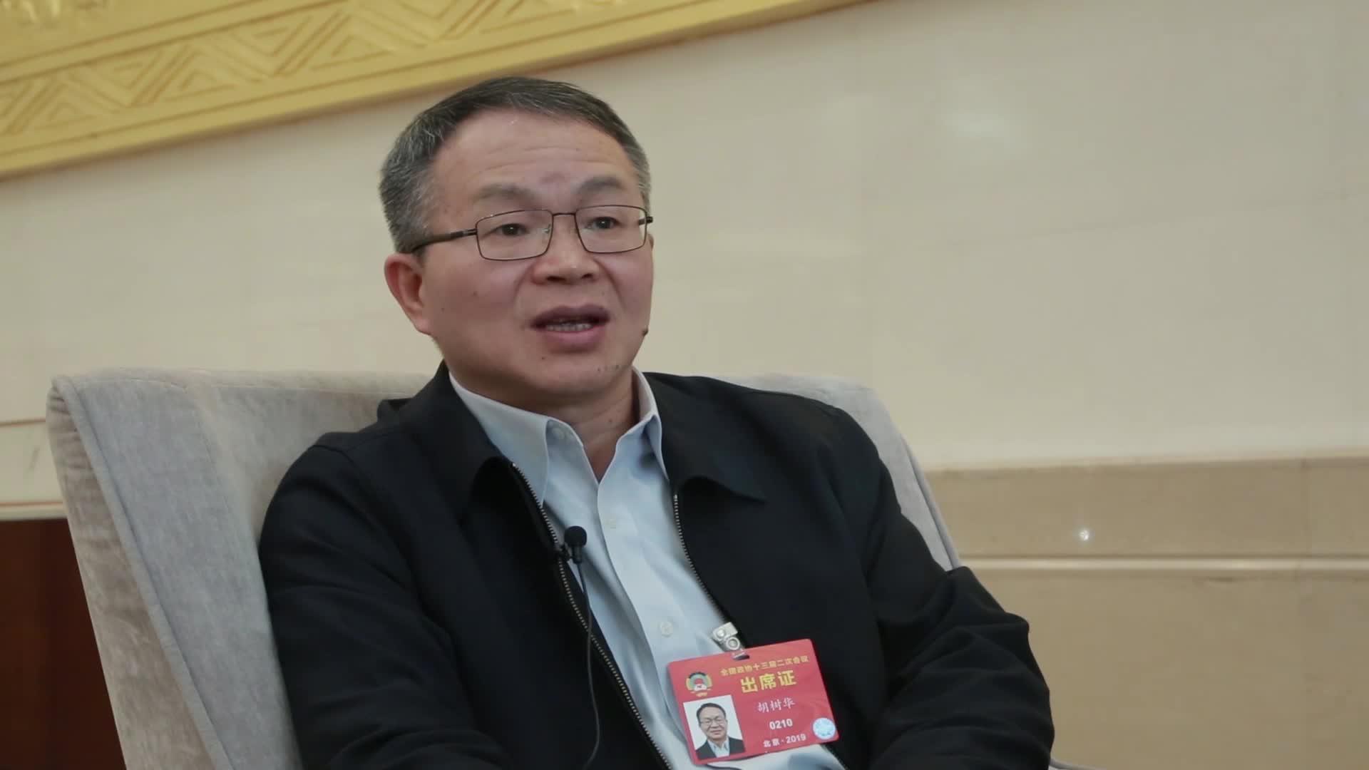 胡树华:在房地产等冲击下 制造业受影响 出现主业虚化
