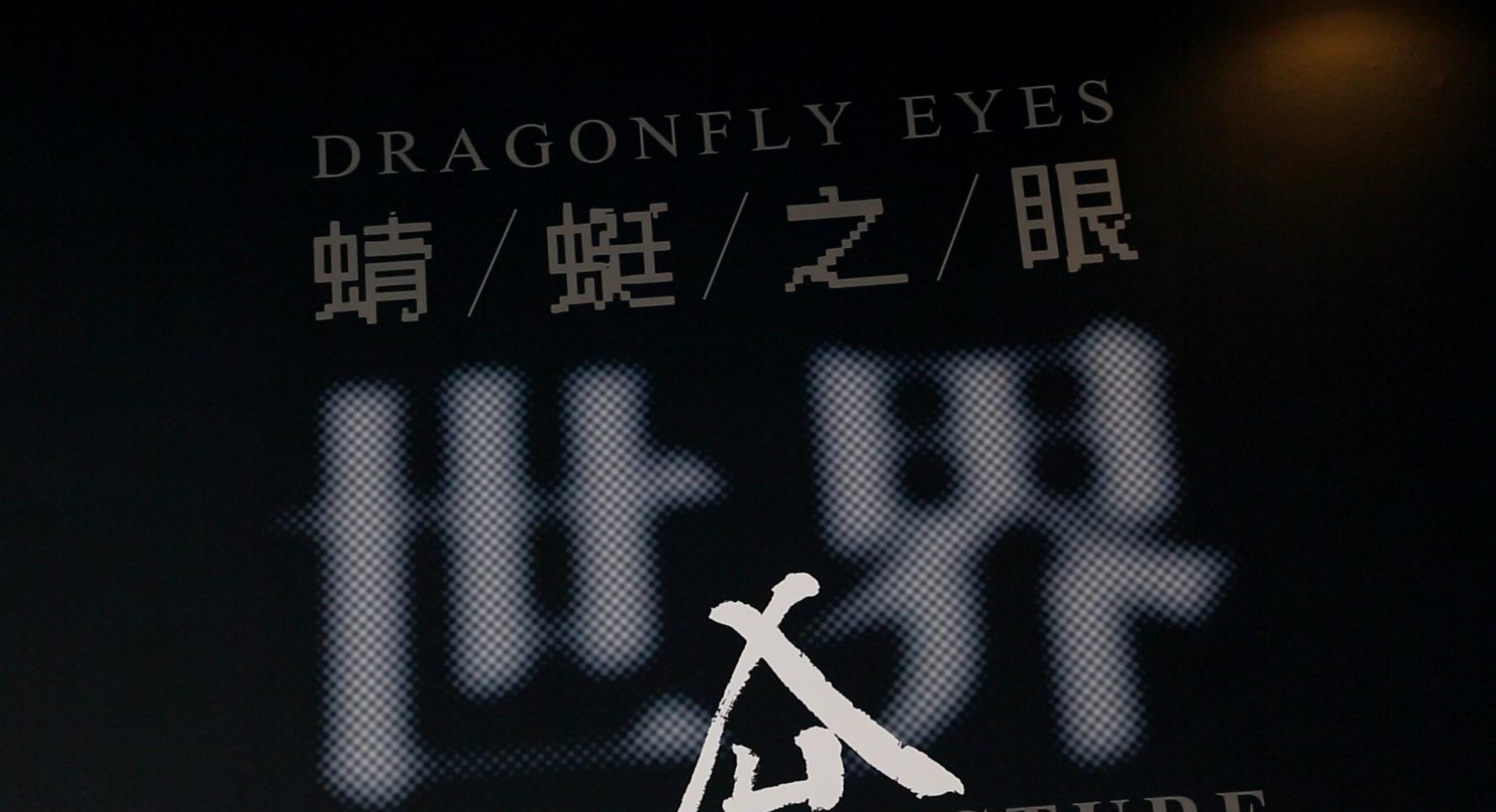 """""""世界图像:徐冰《蜻蜓之眼》""""在今日美术馆开幕"""
