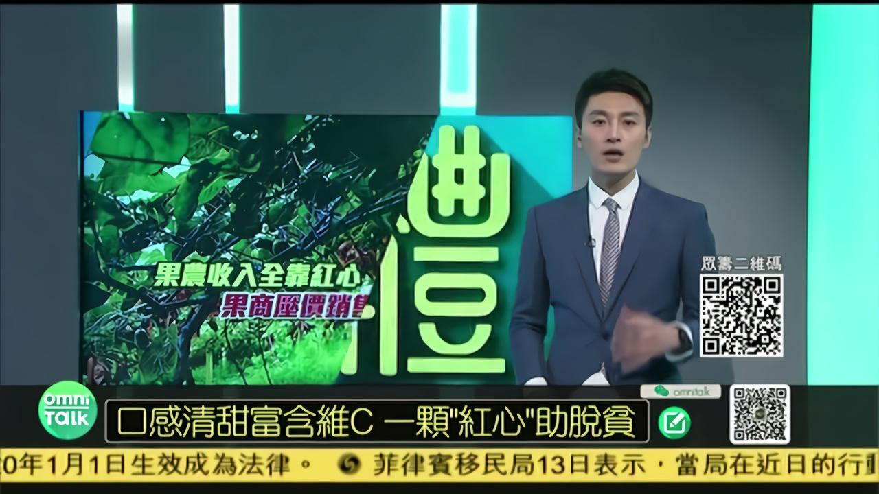 凤凰京东公益助农 四川雅安红心猕猴桃