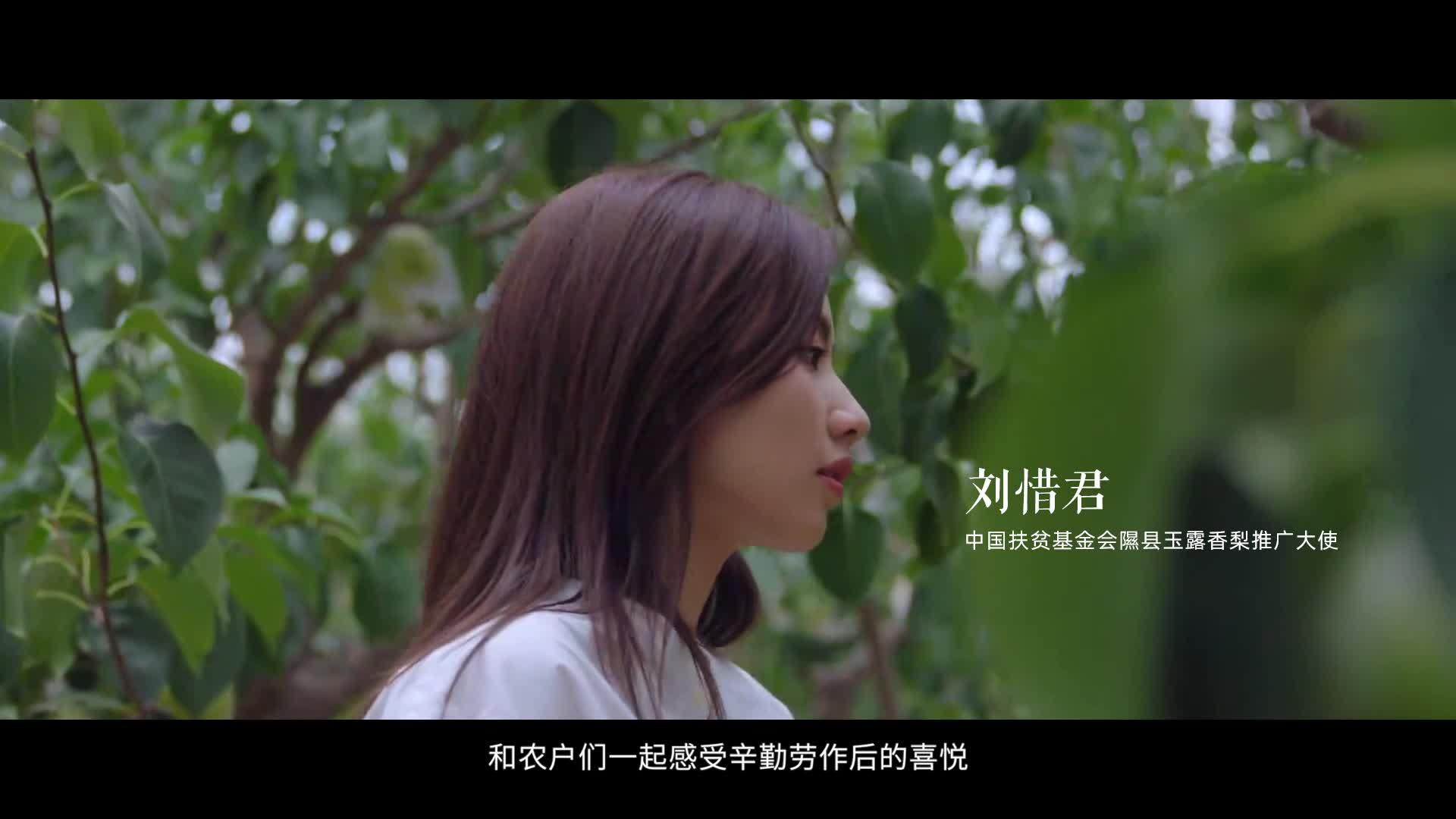 刘惜君:扶贫路上她力量,玉露香梨