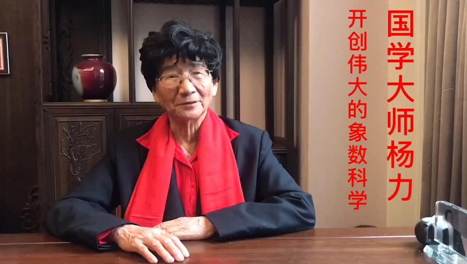 国学大师杨力,谈象数科学
