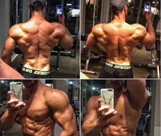 决定肌肉生长能力的几个重要因素
