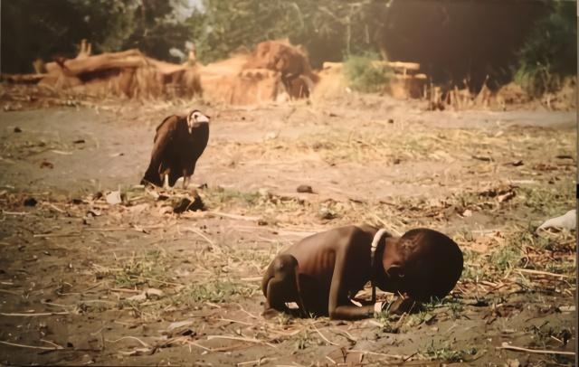 """财经资讯_26年前的""""秃鹫和小女孩""""照片,女孩结局怎样了?摄影师更悲剧 ..."""